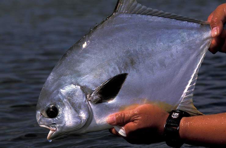 Photo BocaPaila_Fishing_002