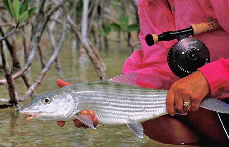 Photo BocaPaila_Fishing_006