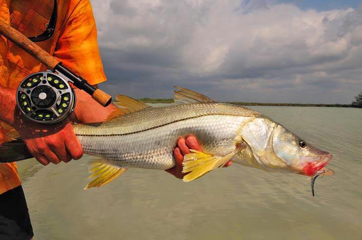 Photo BocaPaila_Fishing_022