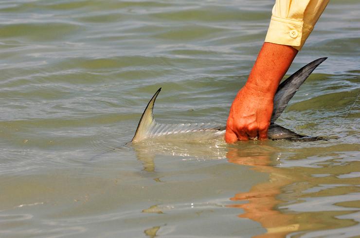 Photo BocaPaila_Fishing_053