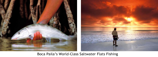 Saltwater Flats Fishing at Boca Paila